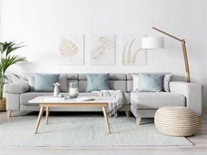 livingroomcleaning